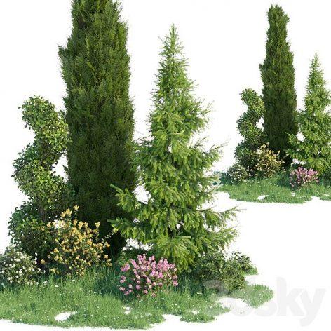 مدل سه بعدی درخت کاج