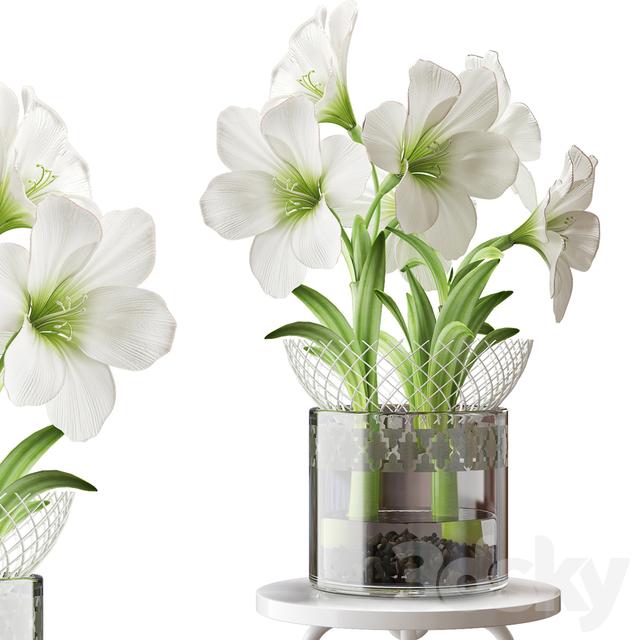 مدل سه بعدی گل سفید