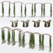 ابجکت گیاه بالا رونده