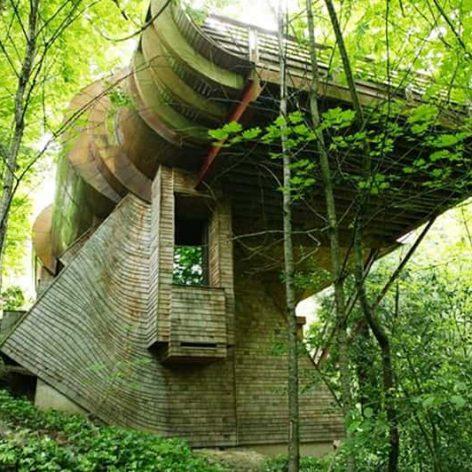بنای ساختمان براساس معماری ارگانیک
