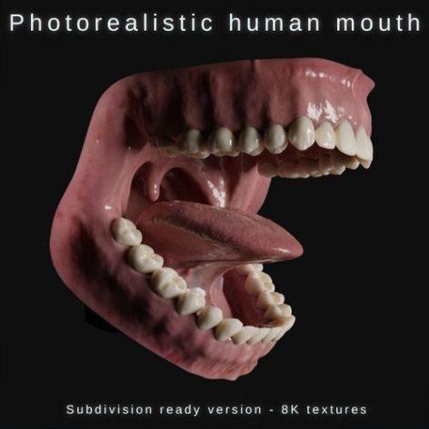دانلود مدل سه بعدی دهان انسان