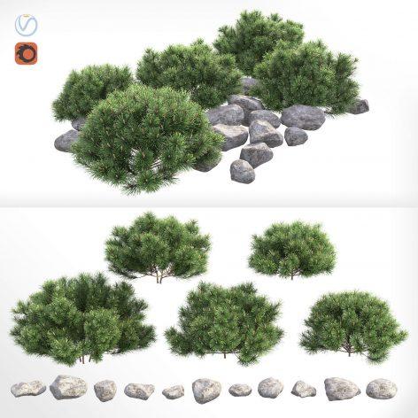 دانلود مدل سه بعدی بوته کوهی سری دوم