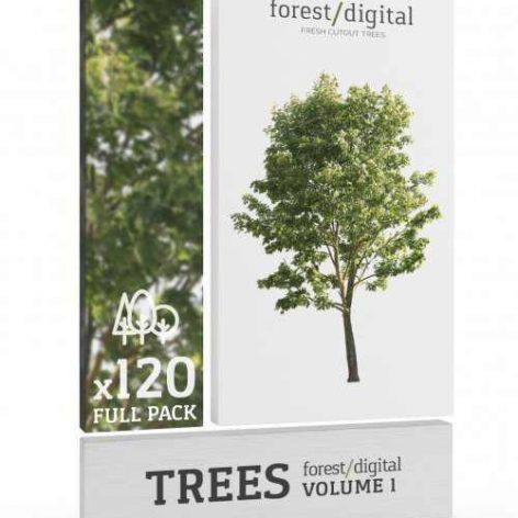 دانلود مدل سه بعدی مجموعه درخت