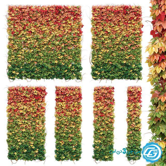 مدل 3 بعدی گیاه پاییزی